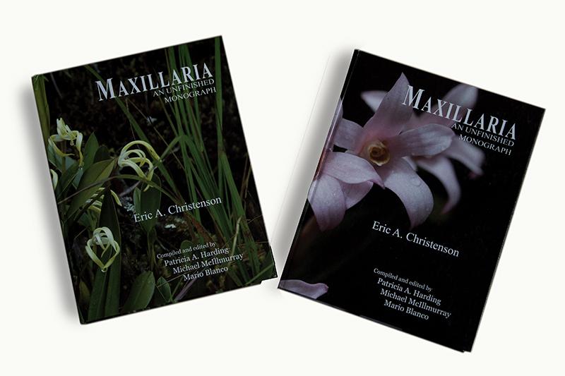 Una monografía inconclusa de Maxillaria