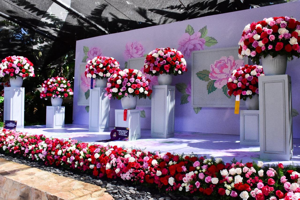 Galería evento Orquídeas Flores y Artesanías