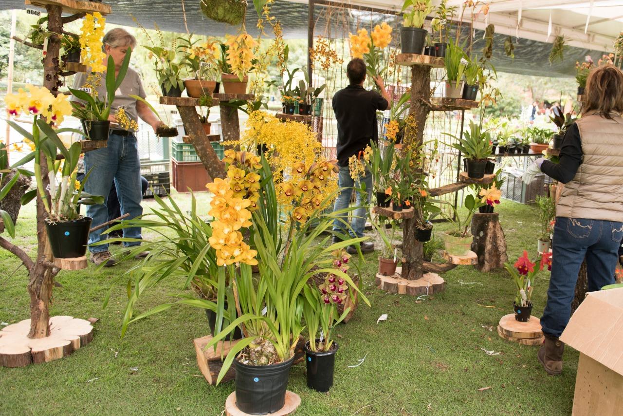Montaje de stand en la Exposición de Orquídeas Jardín Botánico de Bogotá 2018