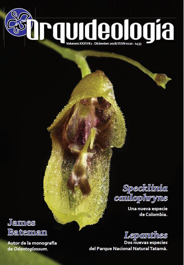 Revista SCO 2018-2