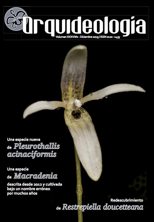 Revista SCO 2019-2